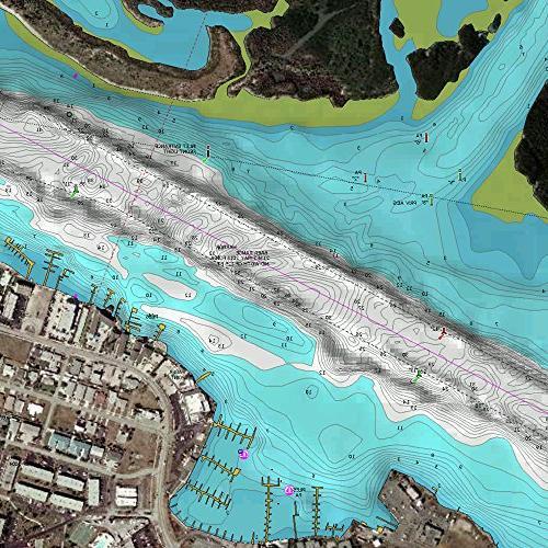 Navionics Gulf Mexico Marine Digital Map - America - United States - Venice, Gulf Of Fishing